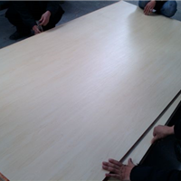 供应多层桉木胶合板