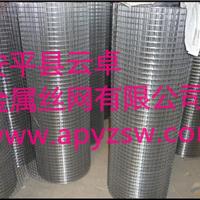 供应钢丝网电焊网抹墙网