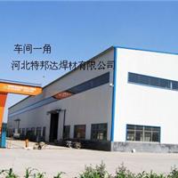 河北特邦达焊材有限公司