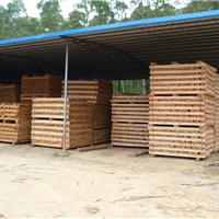 供应沙发木方、桉木方、沙发�燃苣痉�
