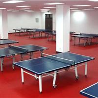 供应北京乒乓球专用地板