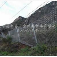 安平县利泰五金丝网制品有限公司