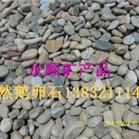 供应各种雨花石  机制鹅卵石 天然鹅卵石