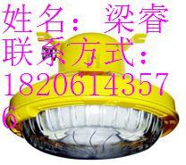 供应【BFC8182长寿低耗防爆灯】 厂家直销