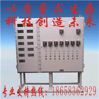 厂家推荐【优质】BXM(D)51系列爆配箱及价格