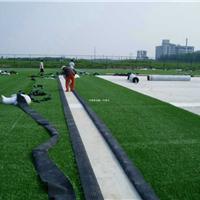 供应学校运动场操场专业人造草皮施工铺设