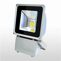 供应LED泛光灯景观亮化照明 商业亮化照明