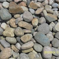 供应天然鹅卵石,水族馆用水草砂