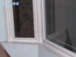 武汉顶立隔音门窗有限公司