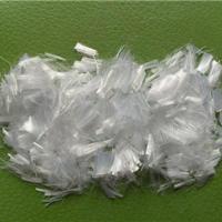 供应聚丙烯纤维