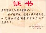 湖南益阳龙头企业