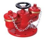 供应多用式地下消防水泵接合器SQD100-1.6A