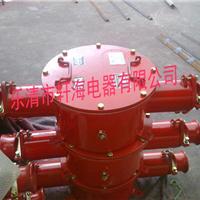 供应BHG1矿用隔爆型高压电缆接线盒