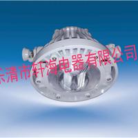 供应DGS-30/127L矿用隔爆型LED巷道灯