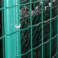 【世界知识产权日】安阳供应葡萄园荷兰网