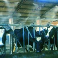 西安畜牧业造雾消毒