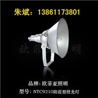 NFC9120防震投光灯