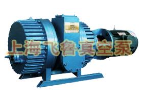 供应什么是ZJ型罗茨真空泵【图】