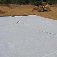 供应土工膜人工湖膜水产养殖膜12