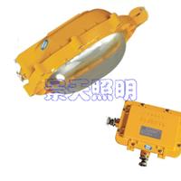 供应BFE8120-J70/消防应急防爆灯