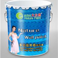 供应中国名牌油漆大自然内墙纳米漆