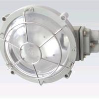 供应BXL-100增安型防爆吸顶灯