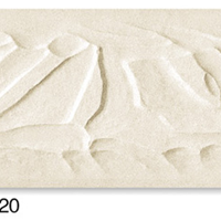 T1020