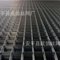 供应冷镀锌电焊网,电镀锌网片,浸塑铁丝网片