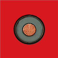 铜芯交联聚乙烯绝缘