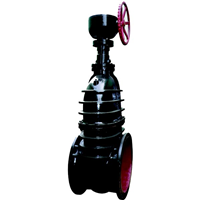 供应暗杆涡轮闸阀Z545TW-10