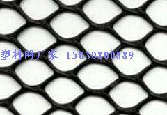 供应塑料网 养鸡网 养鸭网 塑料养殖网