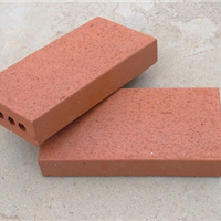 厂家真空砖道板砖陶土砖透水砖烧结砖广场砖