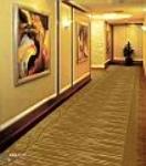 苏州邦龙地毯有限公司