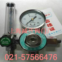 上海减压器厂YQD-LLJ氮气减压器,氮气钢瓶