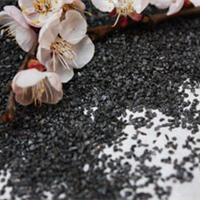 上海无烟煤滤料【价格|作用】