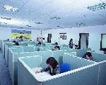 深圳市百丽春电子胶实业有限公司