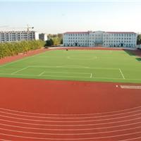 上海湖州塑胶网球场宁波塑胶羽毛球场