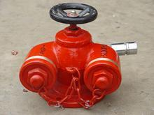 供应SQ型四寸口径地上式水泵接合器