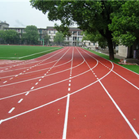 供奉化温州瑞安乐清嘉兴上海塑胶篮球场公司