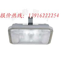 供应NFE9175长寿应急顶灯 NFE9175