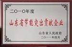 2010年度山东省节能突出贡献企业