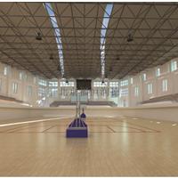供应运动地板,篮球地板,体育地板