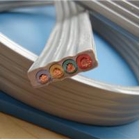 安徽厂家供应扁缆价格,【天康集团】扁缆销售,品质高端