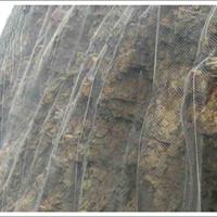 供应 防护网 主动防护网 柔性防护网 公路铁路防护网
