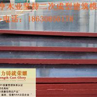 河北廊坊清水建筑模板厂家直销价格