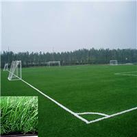 供应足球场人造草坪 人造假草坪批发