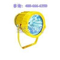 供应海洋王BTC8200防爆投光灯/150W金卤灯
