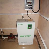 民用电加热暖气炉 平房电暖气 欧式电暖炉