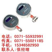 MPM484压力变送器,MDM290 ,差压敏感元件