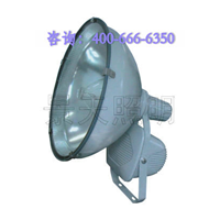 ZT6900ABC防水防尘投光灯||浙江哪家厂家低